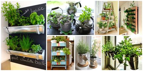 Growing Herbs Inside by 15 Amazing Ideas For Indoor Herb Garden Ideas To
