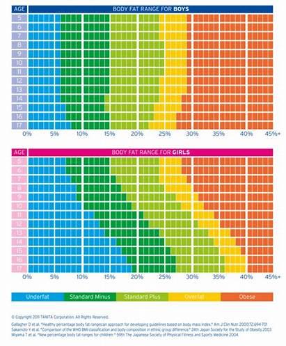 Fat Percentage Healthy Chart Age Ericsson Denise