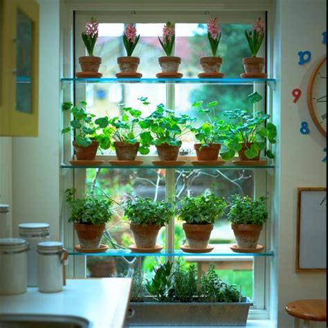 House Plants For Kitchen Window by Kitchen Window Plant Shelves Kitchen Decor