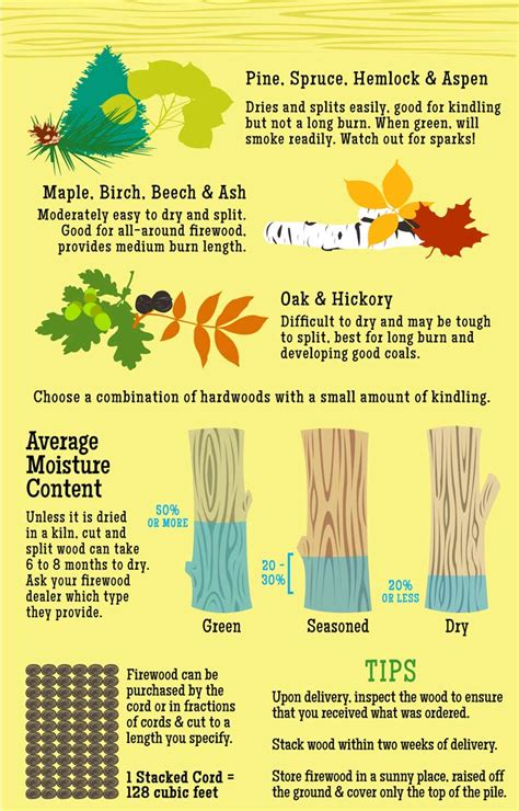 best wood to burn how much is a cord of wood more firewood facts