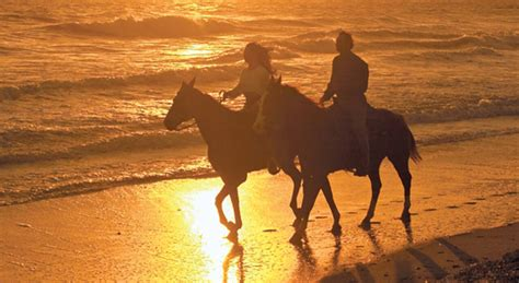 florida horseback riding horse west beach key facilities ride amelia island visit beaches