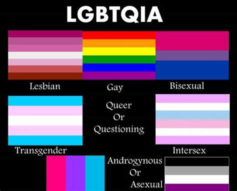 What Does Lgbt Stand For by People Are Confusing Me With All These Multi Sexual