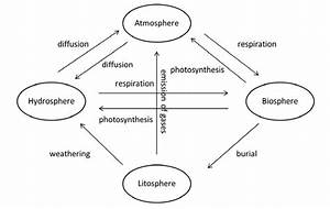 Basic Carbon Cycle In Environment  Epstein  1997