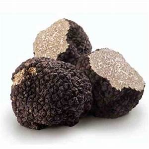 How To Grow Truffles In The United States  U2013 Farm And