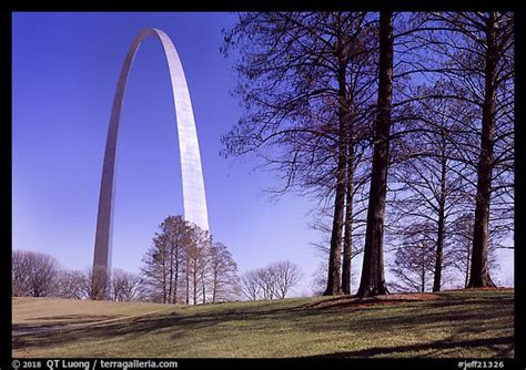 picturephoto trees  arch gateway arch national park