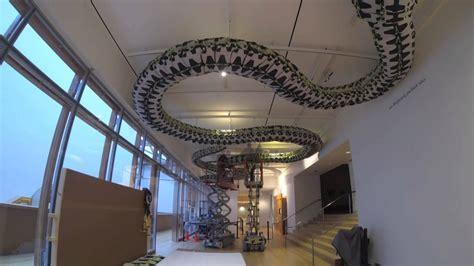 installation  ai weiweis snake ceiling   art