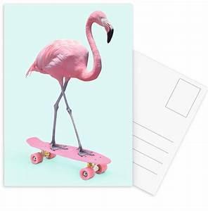 Flamingo Schwarz Weiß : skate flamingo als postkartenset von paul fuentes juniqe ~ Eleganceandgraceweddings.com Haus und Dekorationen