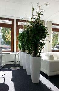 Büro Pflanzen Pflegeleicht : begr nung lounge in stuttgart raumbegr nung innenraumbegr nung objektbegr nung ~ Michelbontemps.com Haus und Dekorationen