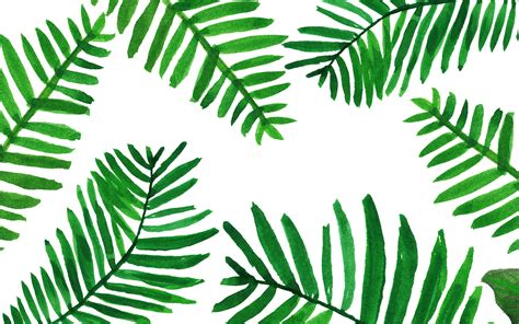 Palm Background Palm Leaves Wallpaper From Www Piximitmilch At Design