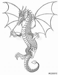 Tattoo Schwarz Weiß : drache tattoo schwarz weiss stockfotos und lizenzfreie bilder auf bild 6288815 ~ Frokenaadalensverden.com Haus und Dekorationen