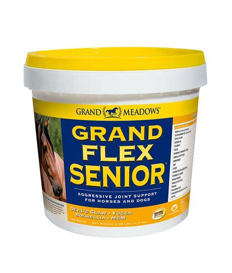 senior joint supplements horse flex supplement horses joints grand older
