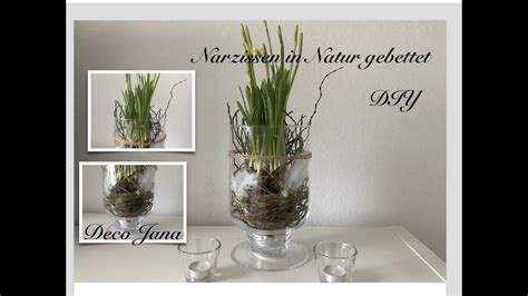 diy fruehling im glas fruehlingsdeko narzissen natur pur