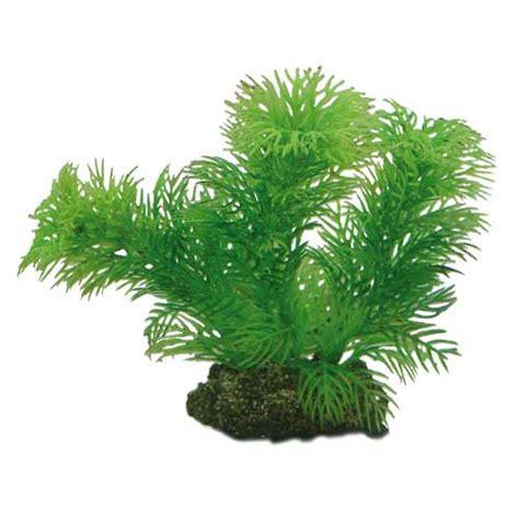 hobby egeria 13cm plante artificielle pour aquarium d 233 corations pour aquarium plantes