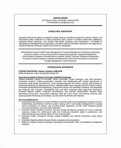 Technical Resume Skills Sample Executive Resume 10 Examples In Word Pdf