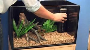 Setting up a Goldfish Aquarium - YouTube