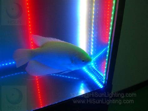 cheap waterproof led light for aquarium