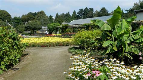 Botanischer Garten Wien öffnungszeiten Sommer by Bemerkenswelt