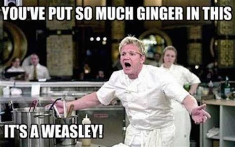 Chef Gordon Ramsay Memes - gordon ramsay insults so raw they ll give you salmonella barnorama