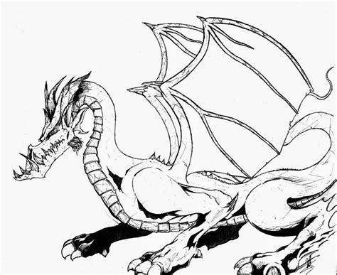 coloring pages dragon coloring pages   printable