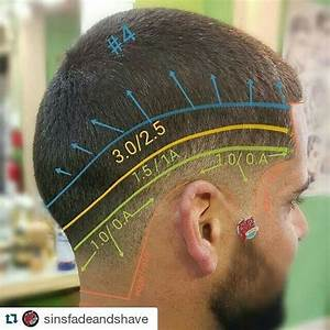 44 Best Hair Cut Diagrams Images On Pinterest