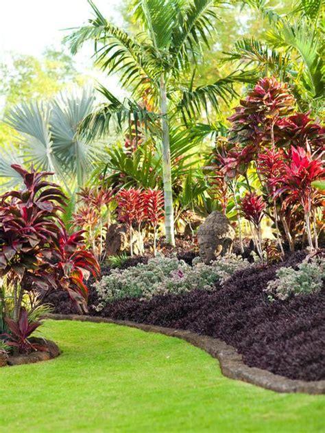 tropical plant landscape design best tropical landscape design ideas remodel pictures houzz