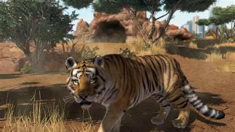 zoo tycoon tiger sumatran players game survival program zootycoon supporting challenge meet community vg247 tigers released weeks result wild few