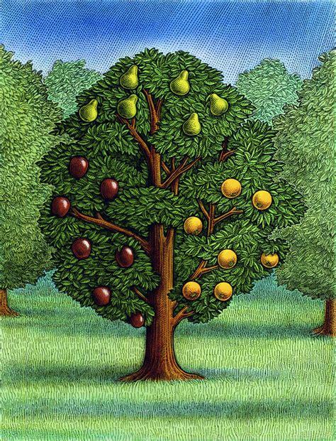 Trees  Ink Rhythm