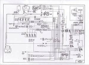 1983 Wiring Diagram