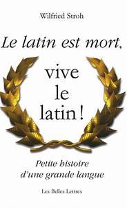 Traduction Francais Latin Gratuit Google : la traduction google du latin ~ Medecine-chirurgie-esthetiques.com Avis de Voitures