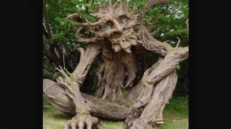 Top 10 Most Amazing Trees Around The World Youtube