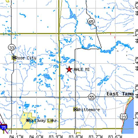 Iosco county is located in the northeast quarter of the lower peninsula of michigan in the heart of lake huron's sunrise side.. Hale, Michigan (MI) ~ population data, races, housing ...