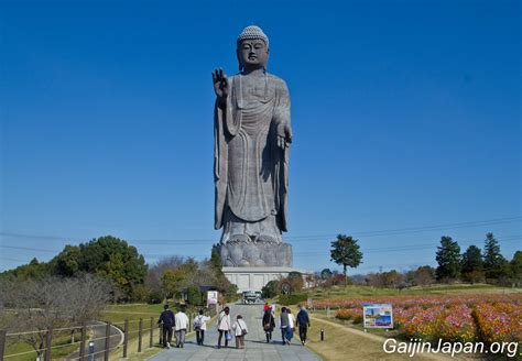 cap cuisine ushiku daibutsu l 39 ex plus grand bouddha du monde un gaijin au japon