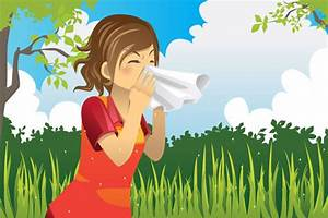Hay Fever Symptoms And Treatment  Expert U2019s Guide To Hay Fever