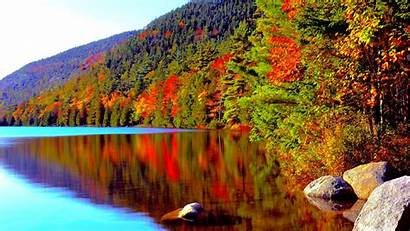 Acadia Autumn Lake Forest Park National Wallpapers