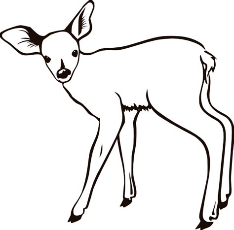coloring  blog archive deer coloring page