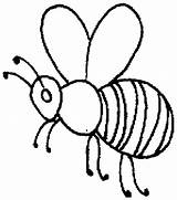 Bee Outline Honey Coloring Pages Beehive Drawing Clip Bees Honeybee Hive Insects Getdrawings Printable Sheet Getcolorings Coloringsky Sky Drawings sketch template