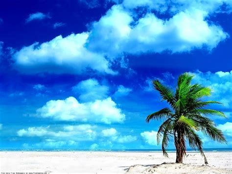 Summer Desktop Wallpaper Pics. #250