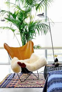 Palmen Für Drinnen : tipps f r die richtige pflege der goldfruchtpalme ~ Michelbontemps.com Haus und Dekorationen