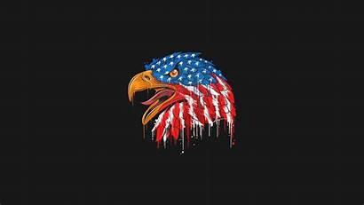 Flag Eagle American 4k Minimal Resolution Usa