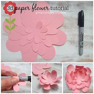 15 Best Photos of 3D Paper Flower Step - How to Make a 3D ...