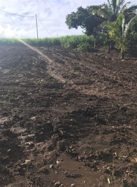 Chambre D Agriculture Ile De La Chambre D Agriculture Demande L 233 Tat De Catastrophe