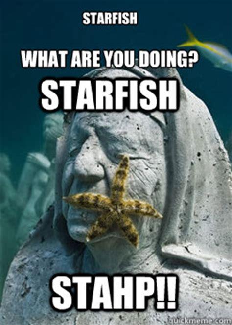 Starfish Meme - starfish what are you doing starfish stahp starfish stahp quickmeme