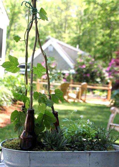 plant a garden hgtv