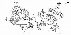 Exhaust Manifold For 2008 Honda City Gd8