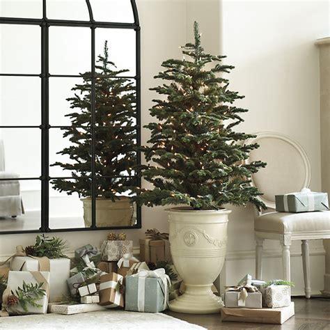 fir christmas tree ideas noble fir tree traditional trees by ballard designs