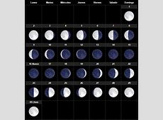 El calendario lunar Abril 2019 para huerto y el jardín