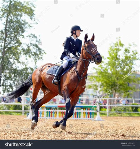 Sportswoman On Horse Horsewoman On Red Stock Photo ...