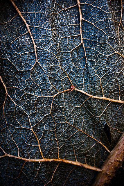 25+ Best Ideas About Texture Photography On Pinterest