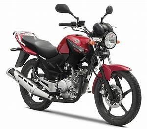 Moto Avec Permis B : petite moto que l 39 on peut conduire avec un permis b l 39 ybr 125 de yamaha est un roadster ~ Maxctalentgroup.com Avis de Voitures