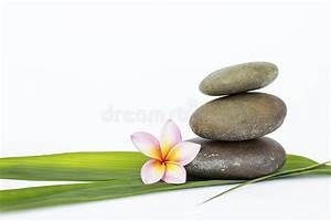 Feuille De Pierre Prix : pierre de zen sur la feuille et la fleur en bambou vertes ~ Dailycaller-alerts.com Idées de Décoration